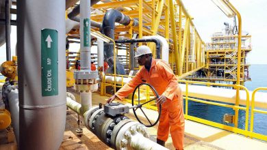 Photo of OPEC, DPR, NNPC target $8bn from crude transport optimisation